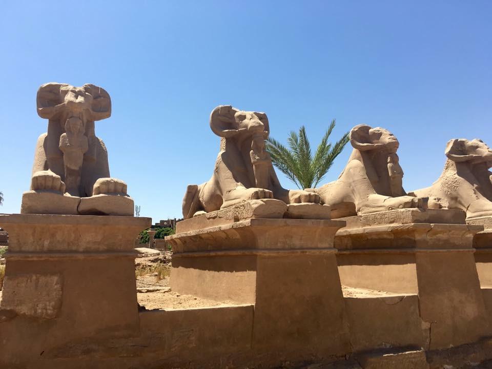 Egyiptom, Luxor, karnaki templom, négy kosfejű szfinx