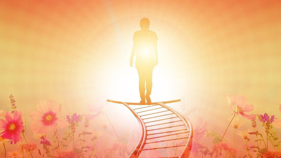 Egy emberi alak áll egy vízszintes létra legvégén, mintha az útja végére ért volna. Alatta virágos rét. Előtte erős fényáradat. fény az alagút végén, ami a másvilágba vezet.